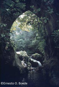 Camino de Carabobo: Reliquia arqueológica del Parque Nacional San Esteban
