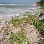 Recetas Dañinas: El Plástico Invade Nuestra Cadena Alimenticia