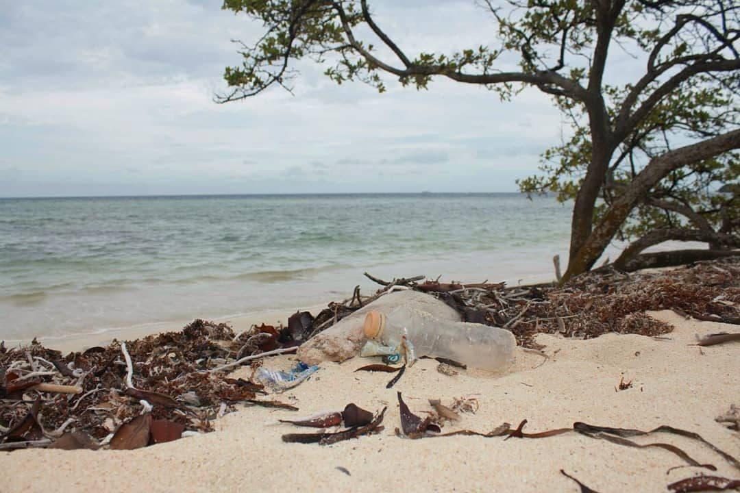 Plástico en una playa de Gran Roque. Archipiélago Los Roques